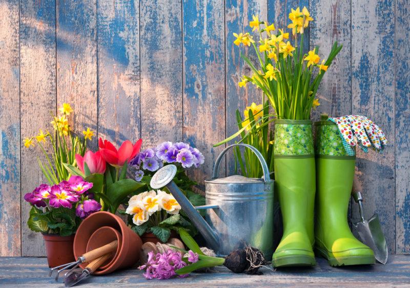 Jardinez autrement, désherbez naturellement la mauvaise herbe